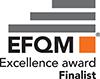 Excellence Award Finalist